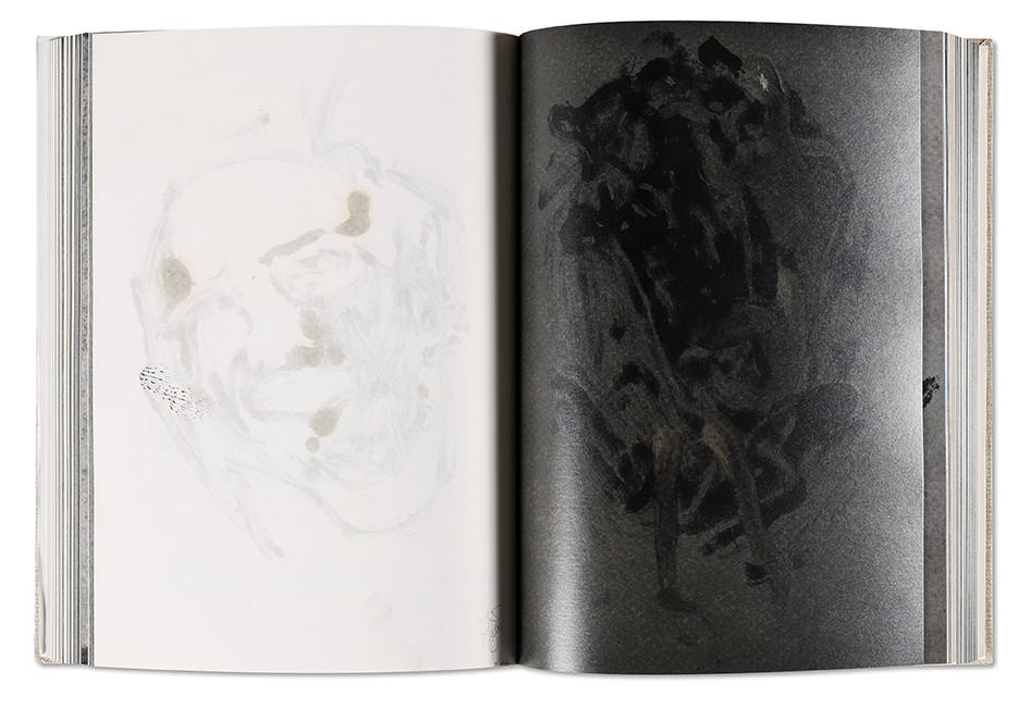 Canibal, Hugo Bonamin, Galerie Baudouin-Lebon, intérieur