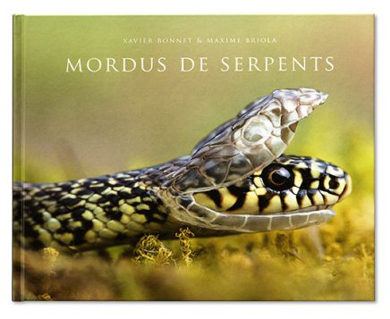 Mordus de serpents - Escourbiac