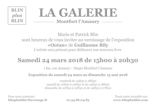 Océan, Guillaume Bily, exposition Galerie Bllin + Blin, invitation vernissage