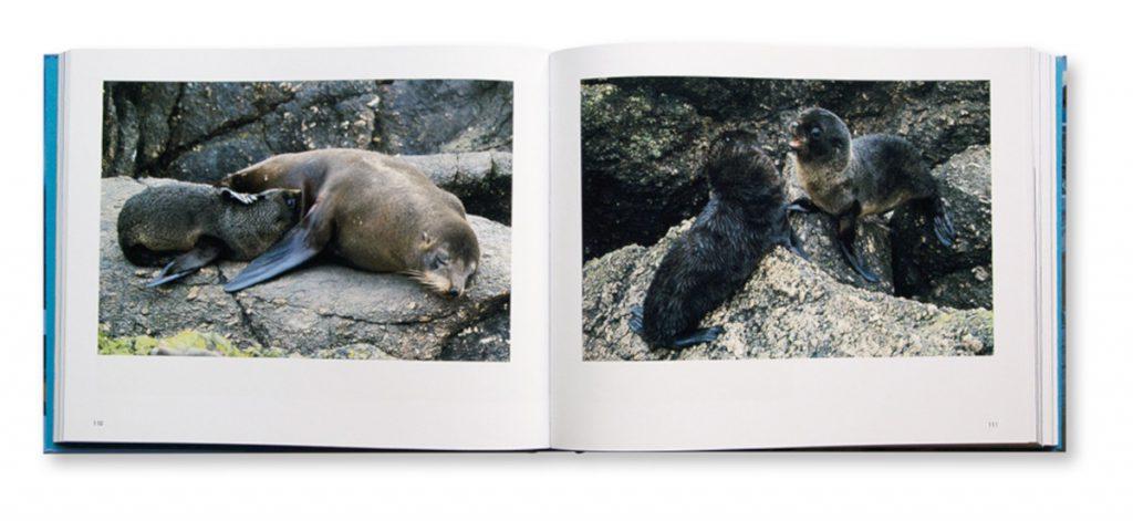 Nouvelle+Zélande, l'archipel aux mille visages, Aurélien Petit, Shana Photo Édition, intérieur