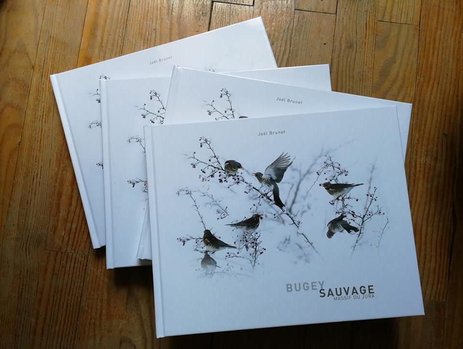 Focus sur l'autoédition, Joël Brunet, Bugey Sauvage