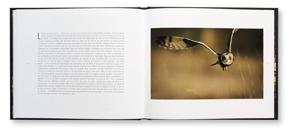 Chaque photo a son histoire, Photographies animalères, LLB photo, intérieur