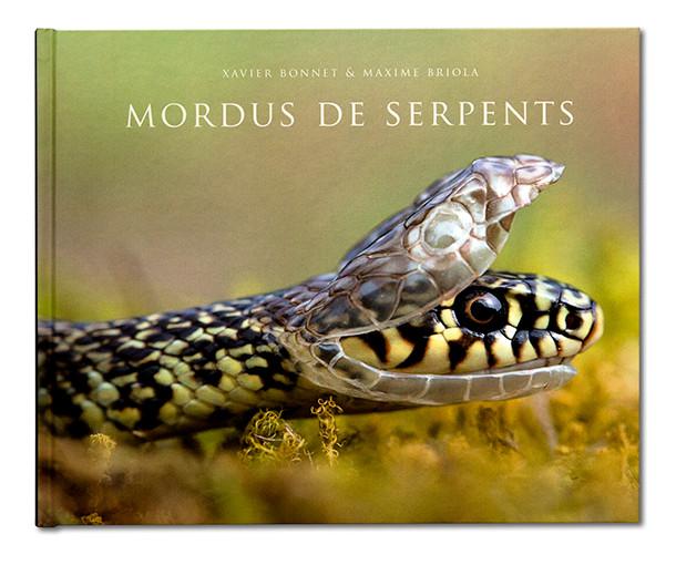 Coffret Mordus de serpent, Xavier Bonnet & Maxime Briola, Regard du Vivant