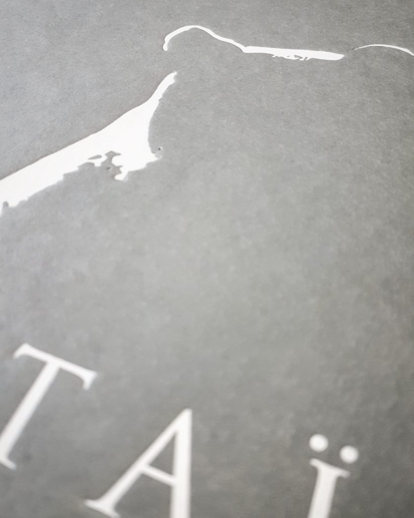 Coffret Taïaga, Thomas Roger & Olivier Larrey, Regard du Vivant
