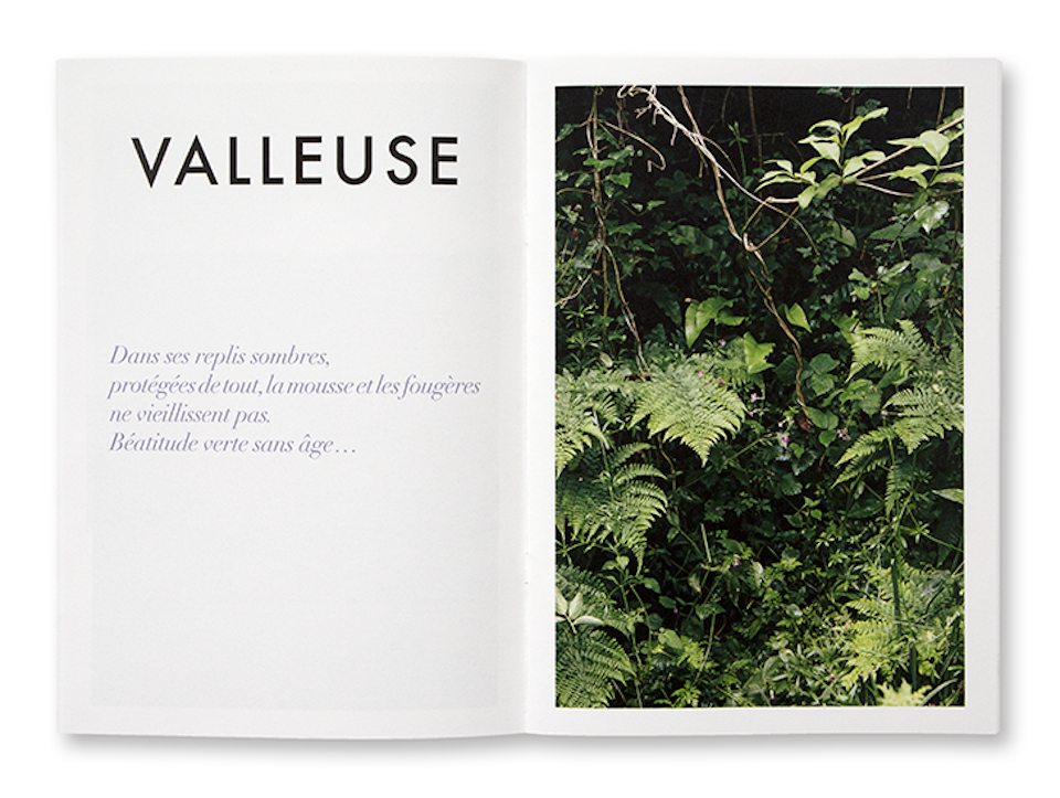 Nature Sensible, Marie Joubert, intérieur