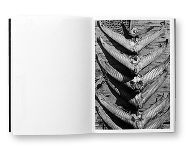 Sensibles, Gilles Magnin, Déambulations visuelles, intérieur