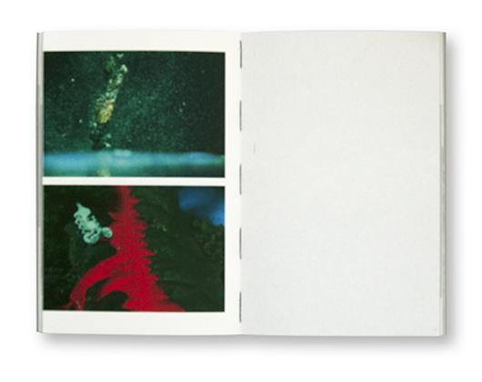 Bertrik, vol.0, Société de Diffusion du Sensible, intérieur
