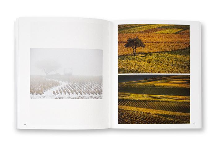 Sancerre, Une histoire de femmes, d'hommes et de vignes, automnales, Pierre Merat, autoédition, intérieur